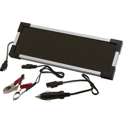 Strongway Amorphous Solar Panel Battery Maintainer Kit - 2 Watts