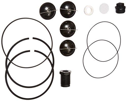 Fill-Rite 5200KTF1828 Fuel Transfer Pump Repair Kit for Series 5200